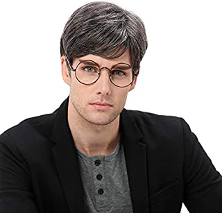 Baruisi Mens Short Gray Wig Natural Hair Replacement Synthetic Costume Halloween Hair Wigs