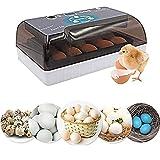 WENZHE Incubadora de Huevos incubadora incubadora para Huevos Incubadora de Huevos Mini 12 Hatcher Machine Totalmente Digital automática DIRIGIÓ Torneado