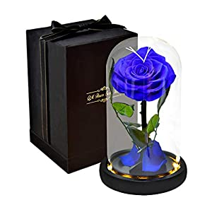 iBOXO Beauty and The Beast Rose Flower Lamp, Rainbow Colorful Rose in a Glass Dome with LED Warm Lights, Preserved Rose Never Withered, Gift for Valentine's Day Anniversary Birthday