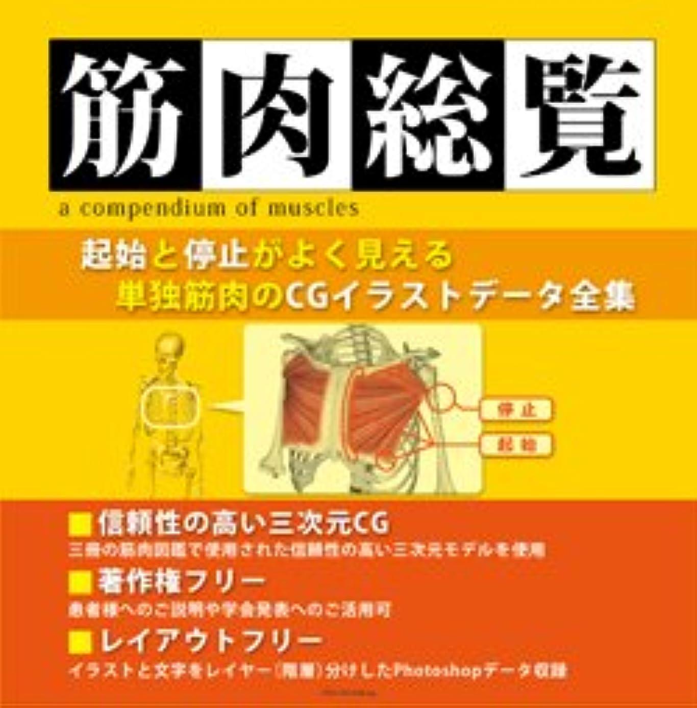 ベーリング海峡女の子快い著作権フリー筋肉イラスト集 筋肉総覧DVD-ROM