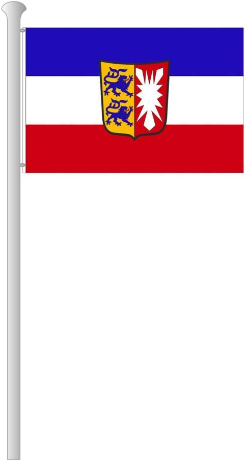 150x100 cm Schleswig-Holstein Fahne mit Wappen Deitert Bundesland-Flagge Schleswig-Holstein Hissfahne aus rei/ßfestem Polyester