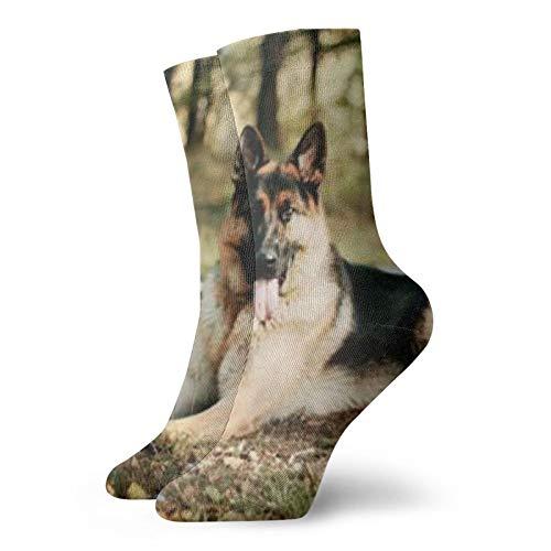 Calcetines de pastor alemán (2) unisex a la moda, novela, individual, suaves, deportivos y de ocio