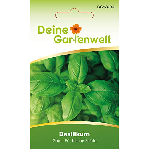 Basilikum Samen (Grün) | Basilikumsamen | Saatgut für Basilikum-Pflanzen | Kräutersamen
