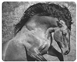 Running Big Beautiful Friesian Horse Cool Animal Rectangle Non-Slip Rubber Laptop Mousepad Mouse Pads/Mouse Mats Case Cover with Designs for Woman Man Employee Boss Work