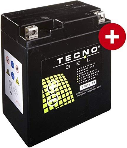 YTX7L-BS TECNO GEL-Batterie für CB 600 F Hornet Baujahr 1998-2001