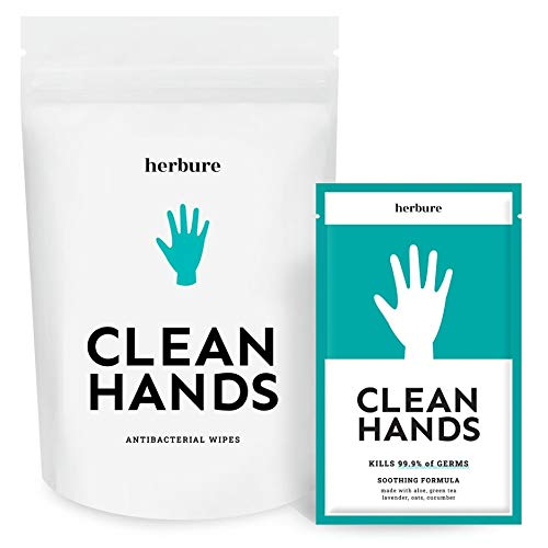 Premium Antibacterial Hand Wipes that Kill 99.9% Germs | Individually Wrapped Sanitizer Hand Wipes – Disinfecting Wipes with Alcohol for Virus Protection