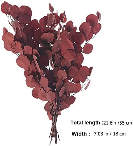 LUOWAN Anshu-red