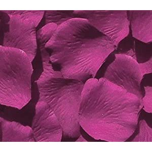 IGC 100 Silk Rose Petals Wedding Favors – Solid Colors – Raspberry – Wedding Reception and Party Supplies
