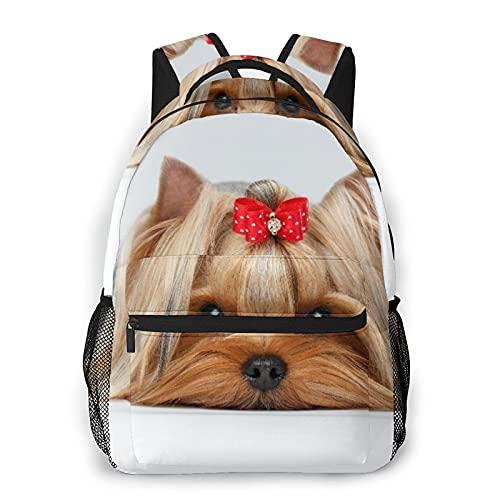 SXCVD Mochila informal,Oseup retrato de perro yorkshire terrier acostado sobre blan,Mochila para portátil de negocios,Mochila de viaje de senderismo para hombres,mujeres,adolescentes