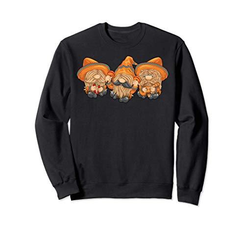Cinco De Mayo Gnomes Mexican Three Gnomes Maracas & Poncho Sweatshirt