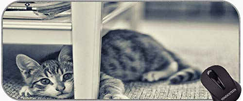 XXL Gaming Mouse Pad, Interior Animal Cat Professional Mousepad, Bordes cosidos