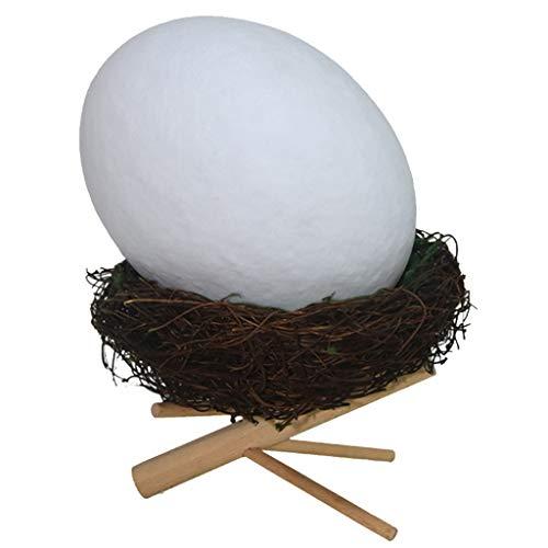 LIULU Vogelnest Tischleuchte UBS-Schnittstelle Lade Creative-Warm Schlafzimmer Nachttischlampe (Color : White)