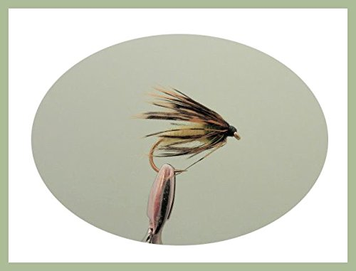 12Stück Caddis Nymphe Angeln Fliegen. Verschiedene Größen 10–14