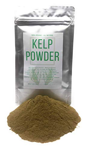 Organic Kelp Powder - Wildcrafted in France from Wild Collection - Net weight: 2.11 Ounces   60 Gram - Thongweed, Sea Thong, Sea Spaghetti - Himanthalia Elongata Powder