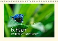 Echsen - Schuppige Ueberlebenskuenstler (Wandkalender 2022 DIN A4 quer): Echsen aus aller Welt (Monatskalender, 14 Seiten )