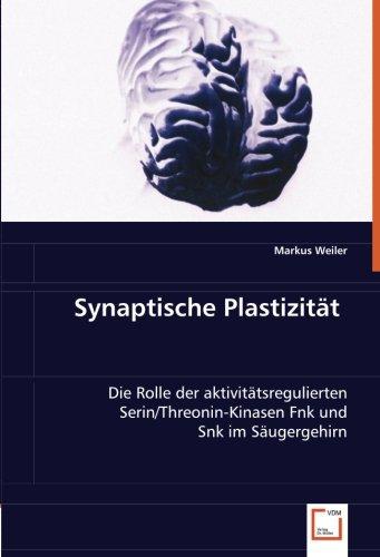 Synaptische Plastizität: Die Rolle der aktivitätsregulierten Serin/Threonin-Kinasen Fnk und Snk im Säugergehirn