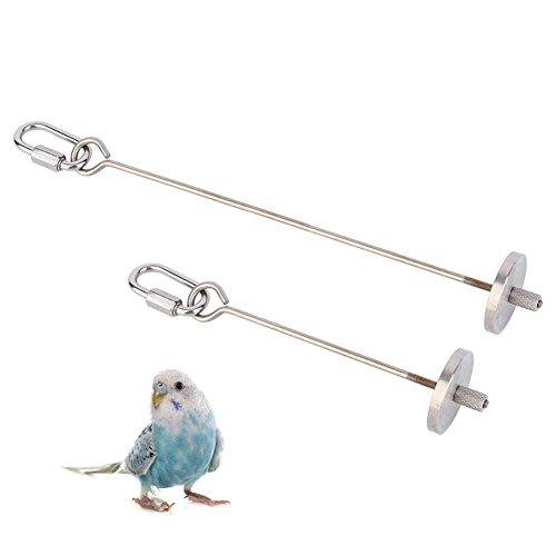 Kuinayouyi Juguete de pájaro de acero para mascotas, loro, periquito, periquito, pequeño pincho de animales, fruta, lanza de loro 20 cm