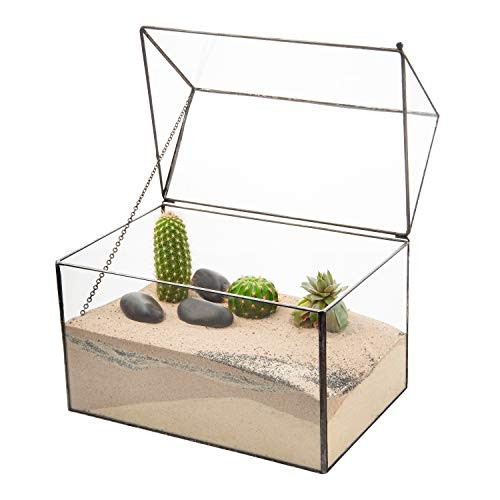 Ultra 22x15.3x19cm Box Style Clear Glass Terrarium Planters Geometrische Form Für Displays Hochzeiten Unique Centrepiece Oder Windows-Serien für Luftanlagen Fern Moss Succulents Indoor Garden