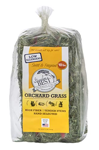 Grandpa's Best Orchard Grass Bale, 10 Lbs (Packaging may vary)