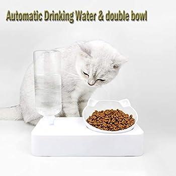 ABenxxou Bol à Nourriture pour Chat avec Support surélevé, Gamelle Double pour Chat 2 en 1 PP Distributeur d'eau Automatique Buveur Oreilles en Clever Idéal pour Les Chats et Petits Chiens