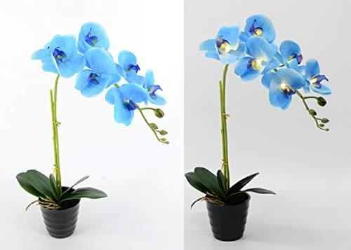 Floristlighting LED-Orchideenblume/Bonsai/Bonsai, 50 cm, warmes LED, mit 2 AA-Batterien, 7 Stück