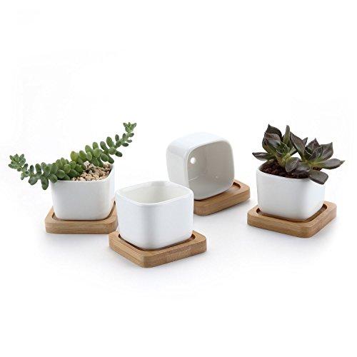 T4U Conjunto de 4 Ceramica Blanca Mini Cuadrado Cerámicos Planta Maceta Suculento Cactus Planta...