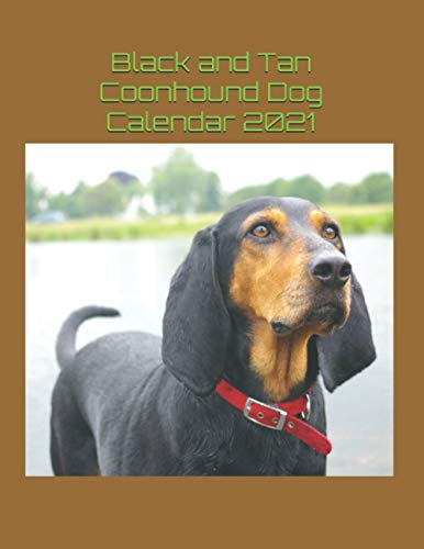 Black and Tan Coonhound Dog Calendar 2021