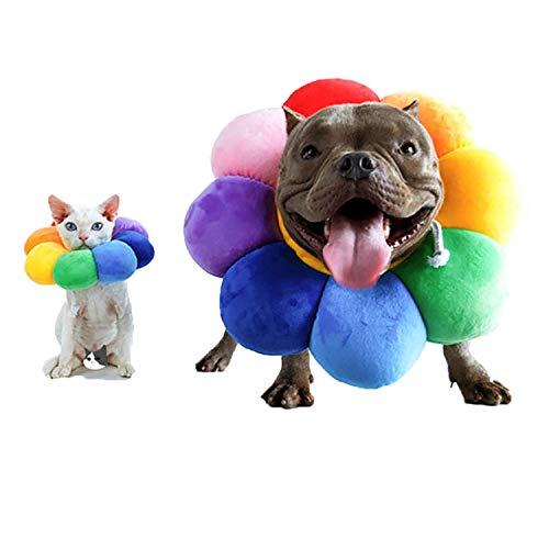 Runaty Collar De Recuperación Ajustable para Mascotas - Protector De Recuperación Cono para Mascotas Curación De Heridas Protector Borde Suave para Mascotas/Gatitos/Gatos/Perros Pequeños L