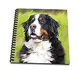 "3dRose db 4402 3 Bernese Mountain Dog Mini Notepad, 4 by 4"""