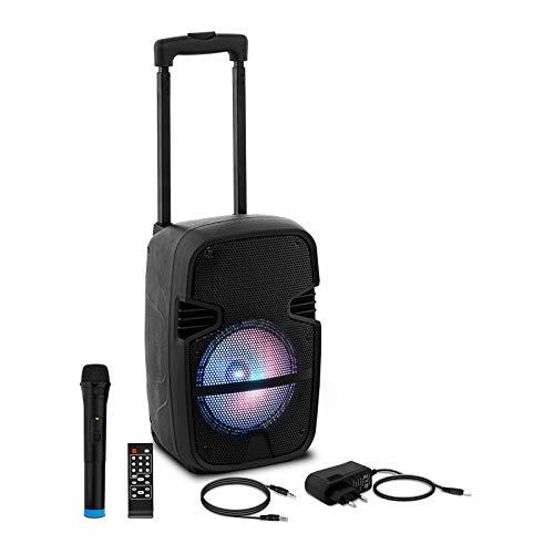 Uniprodo Altavoz PA Portátil Con Batería CON.PAS8-01 (MP3, radio, grabación, Con 2 micrófonos inalámbricos y mando a distancia, 15 W)