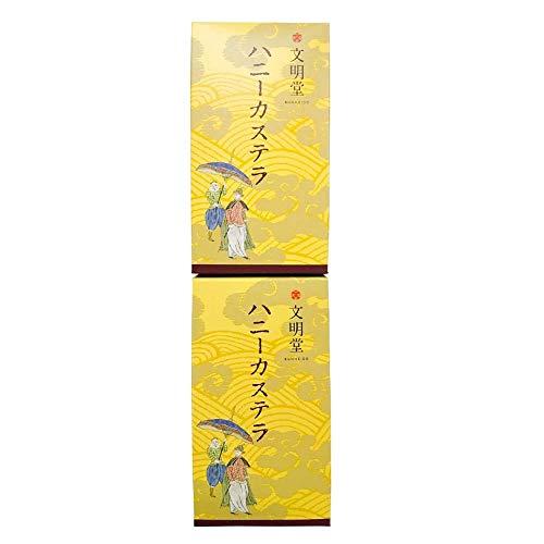 【公式】文明堂 ハニーカステラ0.5A号2本入(ハニー5切カット×2本) 包装品 和菓子 ギフト 手提げ袋付き