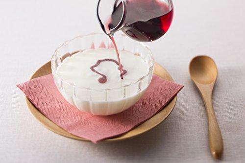 内堀醸造フルーツビネガー5本セット(有機りんご・ぶどうとブルーベリー・ざくろ・レモンライム・黒酢と果実)