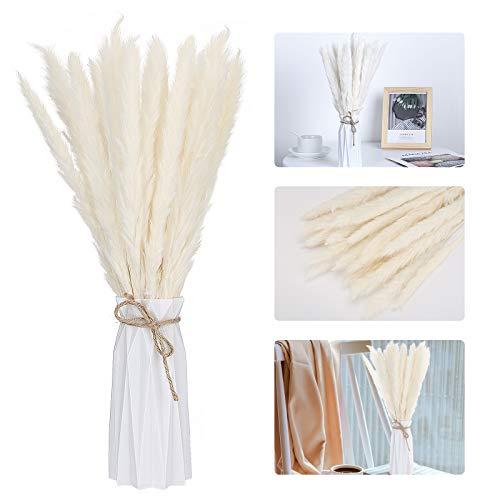 Aitsite 30Pcs Bouquet di mazzi di canne essiccate Naturali, Fiori Secchi per Casa e Matrimoni, Decorazione Boho Bouquet Fiori Artificiali, con Vaso (Bianca)
