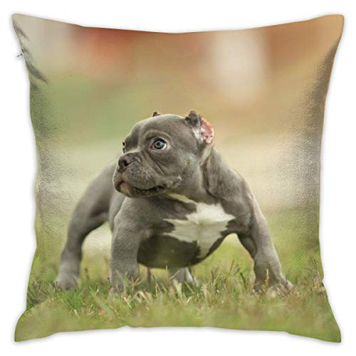 AOOEDM Funny Dog Personalized Square Woven Decorative Cotton Linen Single Pillowcase Cushion Cover for Sofa Sofa Or Bed Set 18x18 Inches