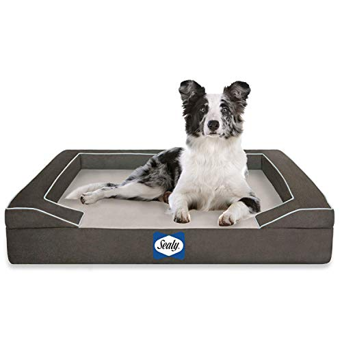 Sealy Lux Quad Layer Orthopedic Dog Bed