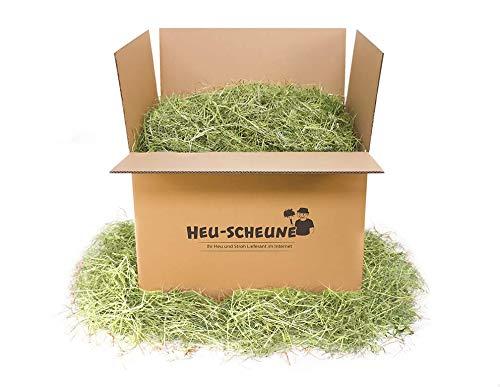 Heu von der Heu-Scheune® 2.Schnitt Grummet Heuballen Futter Kaninchen Meerschweinchen Hase (20kg)