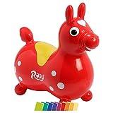 Cavallo Rody inkl. Pumpe