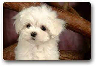 """Doormat Maltese Puppy Indoor/Outdoor/Front Door Mat(23.6""""x15.7"""",L x W)"""
