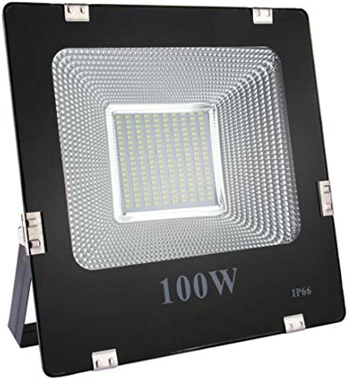 GuoBo LED Light LED-Licht 100W IP66 wasserdichtes LED-Flutlicht, 180 LEDs SMD 5730 9000 LM, AC 170-265V (weies Licht) (Farbe   Weiß Light)