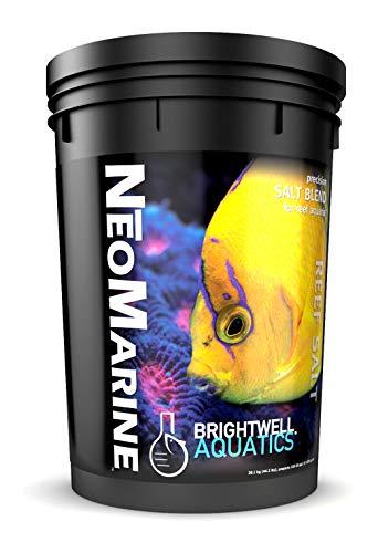 Visit the Brightwell Aquatics ABANMAR150 Neomarine Marine Salt for Aquarium, 150-Gallon on Amazon.