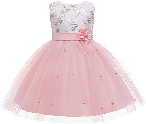 Christening Lace Birthday Christmas Easter Special Occasion Flower Baby Girl Dress Princess product image
