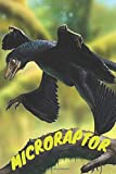 Microraptor: Notebook With Dinosaur, Notebook For Notes, Kids Notebook, Lined (Cartoon Cover, 110 Pages,6 x 9)