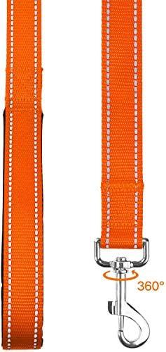 TAGLORY Laisse de Dressage réfléchissante pour Chien, poignée rembourrée en néoprène et Crochet en métal, 1.8m x 2.0cm Laisse en Nylon pour Petits Chiens, Orange