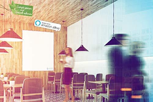 ASM Büro B-TH60RF Infrarotheizung 600 Watt Heizpaneele mit Rahmen kaufen  Bild 1*
