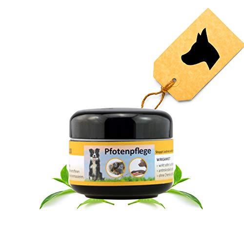 Peticare Spezial Pfoten-Balsam für Hunde - Pfoten-Pflege bei Entzündungen, Verletzungen, rissigen,...