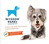 Wisdom Panel Dog DNA Test Kit -...