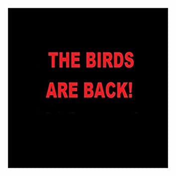 The Birds Are Back!