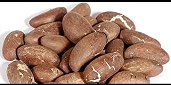Best bitter kola nuts Reviews