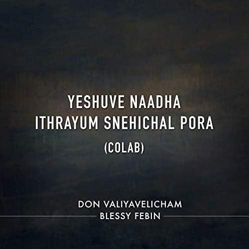 Don Valiyavelicham & Blessy Febin