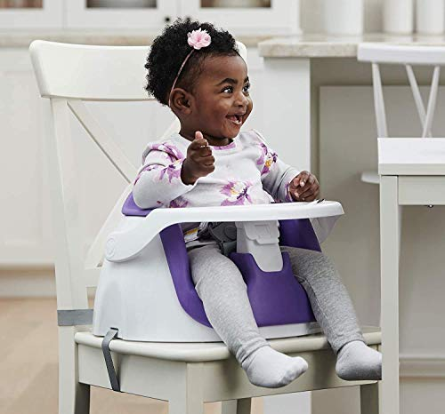 Regalo My Little 2-in-1 Booster Seat and Grow with Me Floor Seat with Removable Feeding Tray, Indoor and Outdoor Activity Chair, Purple